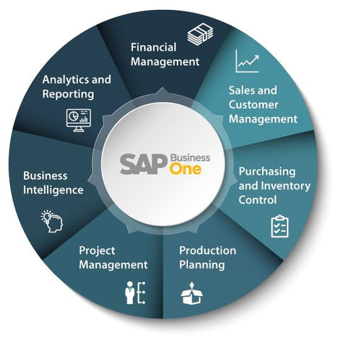 SAP B1 RENEWALS