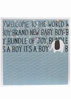 Bundle of Joy Baby Boy Card - Daisy Park