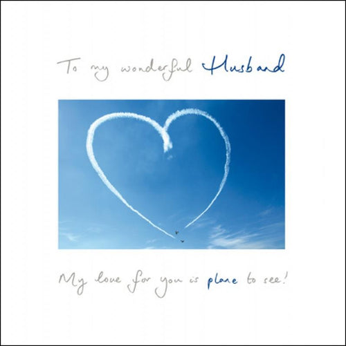 Plane to see Husband Valentines card - Daisy Park