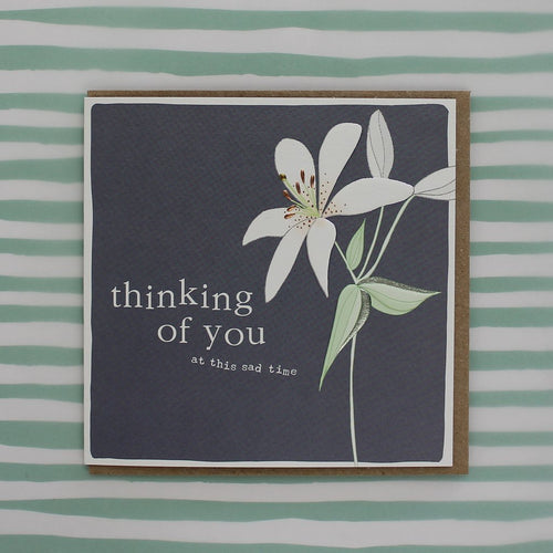 Thinking of you lily card - Daisy Park