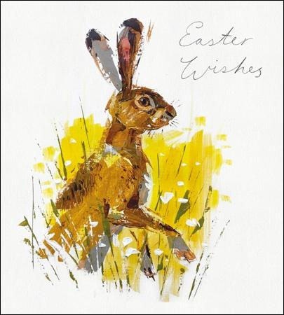 Easter Rabbit pack of 5 cards - Daisy Park
