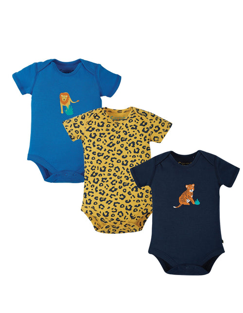Super Special 3 Pack Body - Big cat multipack - Daisy Park