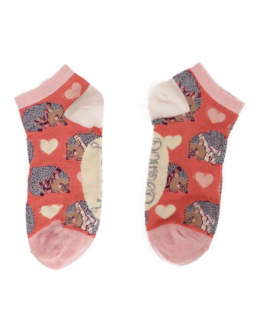 Hedgehog trainer socks - Daisy Park