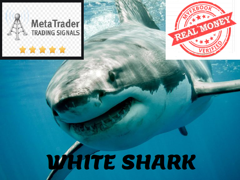 White Shark Expert Advisor