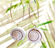 Load image into Gallery viewer, Ariel Hoops ~ Salty Shells
