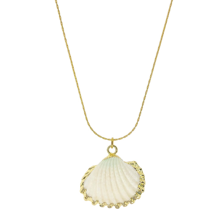 Gold cockle shell necklace