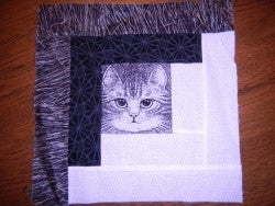 Unfinished Cat Quilt