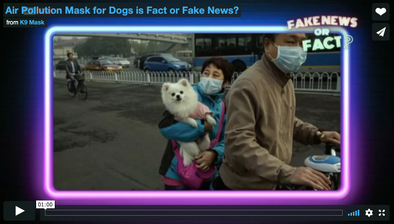 Dog Pollution Air Filter Mask Videos