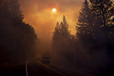 Long Term Health After the California Wildfire Smoke