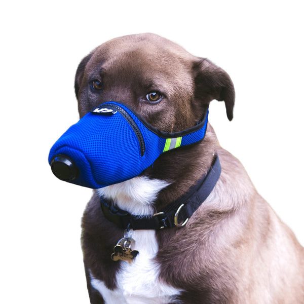 anjing Air pollution filter mask