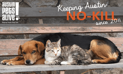 Austin Pets Alive! No Kill Pet Rescue