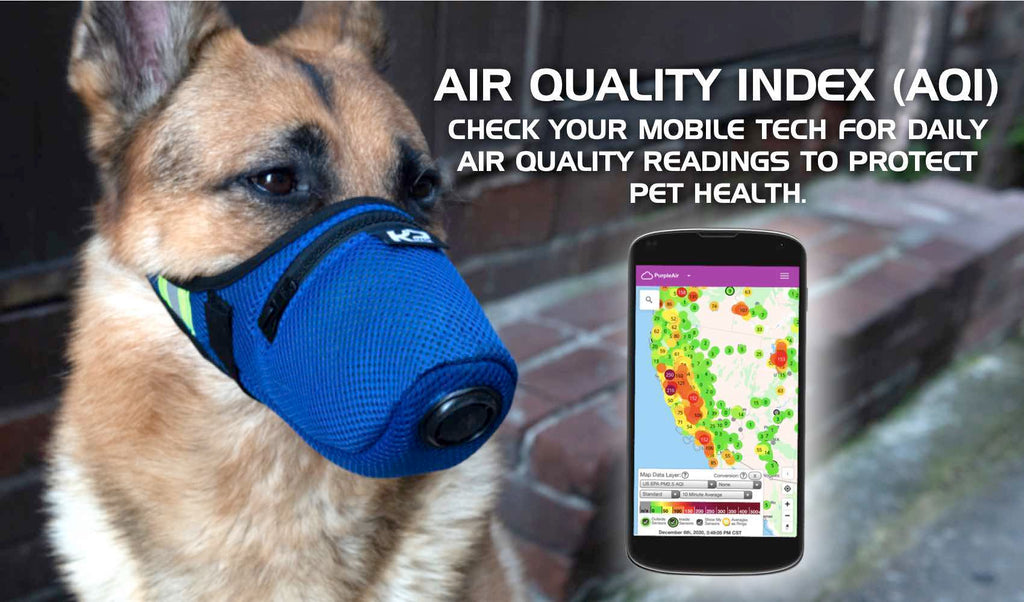 AQI Weather Apps Include Air Quality Index for People and Pet Health