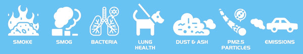 Protect dogs from PM2.5 toxic air pollution smoke and dust
