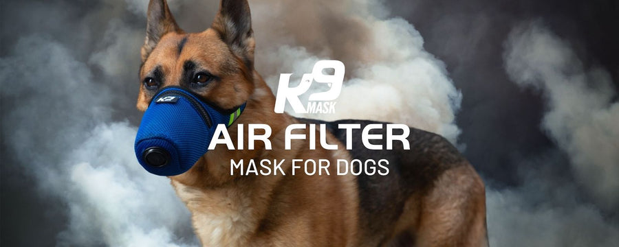 K9 Mask® Air Filter Pollution Mask for Dogs in Smoke, Dust, Ash, Chemicals, Smog, Allergy, Pollen Air Filter for Dogs