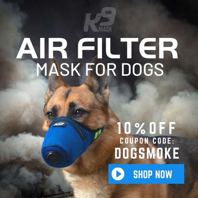 K9 Mask® Air Filter Gas Mask for Dogs in Wildfire Smoke, Dust, Ash, Chemicals, Smog, Allergy, Pollen