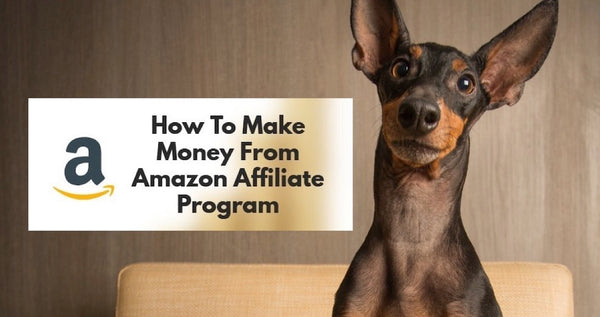 Earn Money with Amazon Affiliate Marketing Account for Pet Products