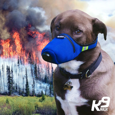 K9 Dog Air Filter Smoke Mask for Dogs
