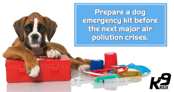 Dog Emergency Kit with Air Pollution Dog Filter Mask