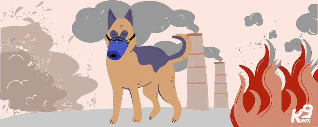 K9 Mask protects dogs from smoke, dust, ash, toxins, chemicals, bacteria, and smog