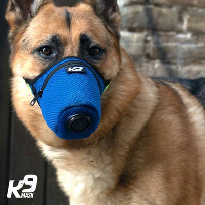 K9 Mask N95 Air Filter Dog Pollution Respirator Mask