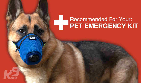 Shop K9 Mask® by Good Air Team