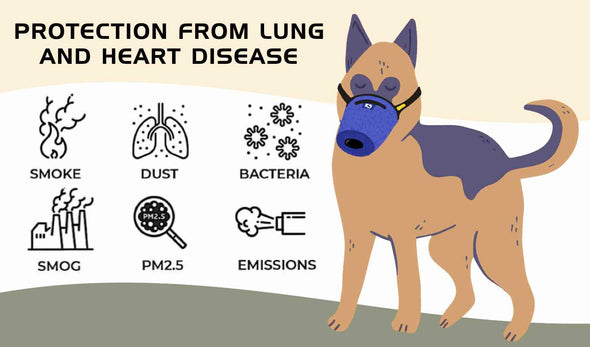 N95 K9 Mask Protects a Dog From Smog, Pm2.5, Emissions, Smoke, Smoke, Dust, Ash, Bacteria, Virus
