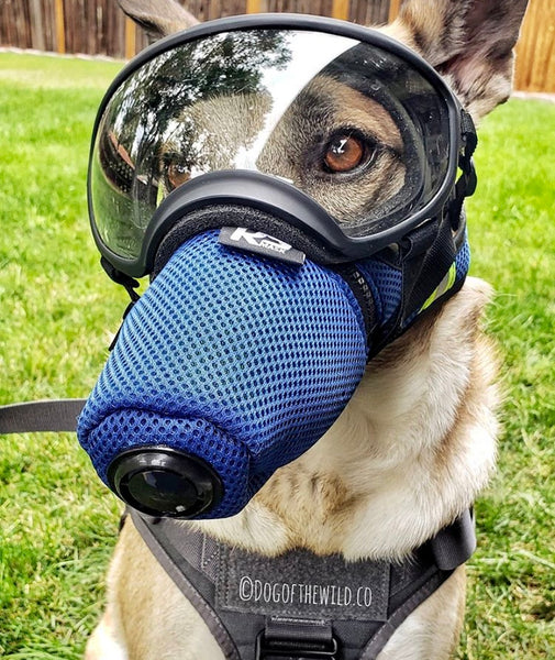 K9 Mask® and Doggles dog goggles and air filter