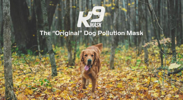 Original Dog Air Filter Mask for Pets - K9 Mask