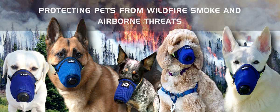 California Wildfire Smoke Air Filter Mask for Dog K9 Mask®