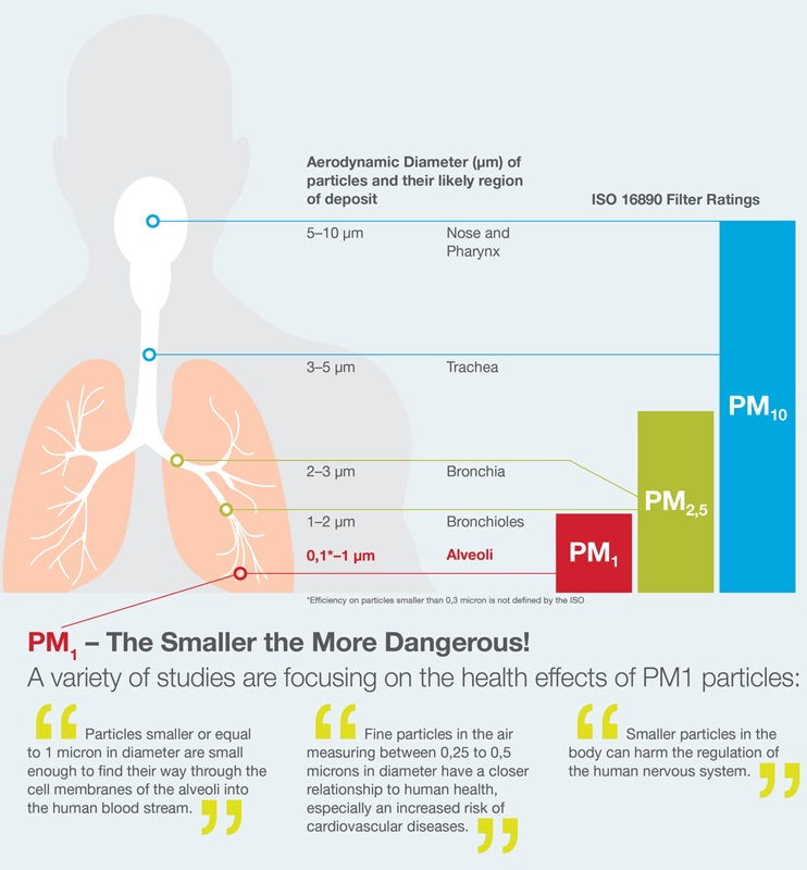 Particulate Matter Size Impact on Lung Health in Dogs and People