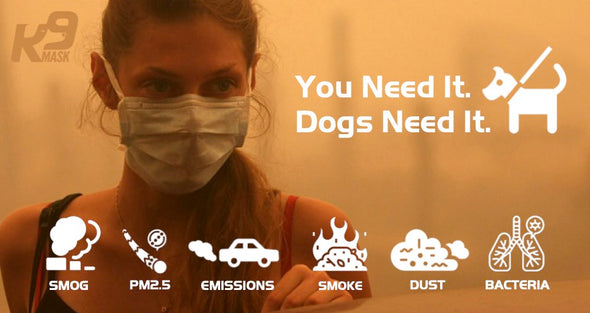 K9 Mask Protects Dogs and Pets from Smoke Dust Smog Bacteria Emissions