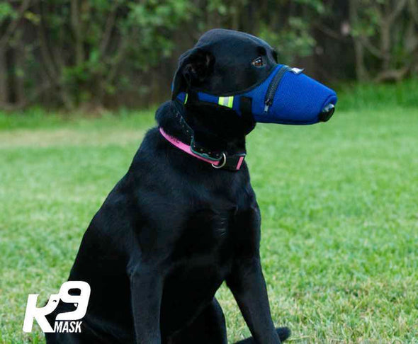 K9 Mask® - Pure Air Dog Luftforurensningsfiltermaske Stor
