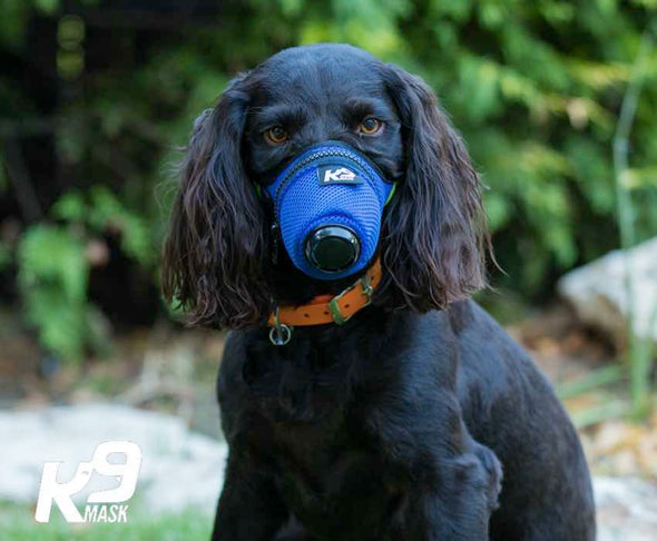 K9 Mask® - Pure Air X1 Dog Air Pollution Filter Mask Medium