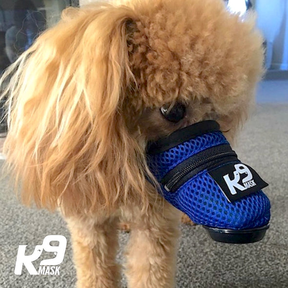 K9 Mask - Pure Air X1 Dog Air Pollution Filter Mask - Small (Short Neck Strap)