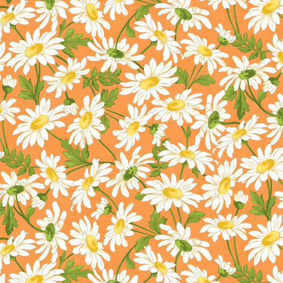 Maywood Studio Fresh As A Daisy Orange