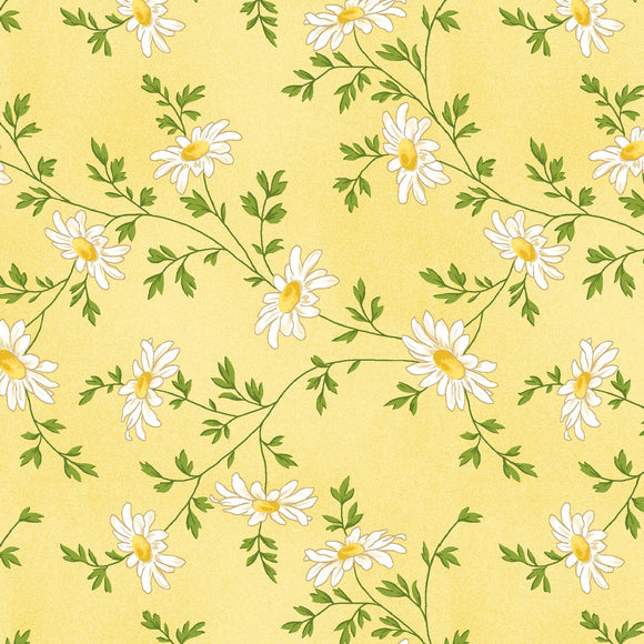 Maywood Studio Fresh As A Daisy Yellow