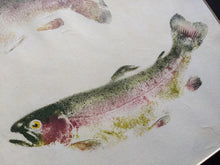 Load image into Gallery viewer, Double Rainbow trout original gyotaku. 20x24