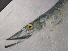 Load image into Gallery viewer, Northern Pike Original Gyotaku. 28x20