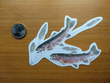 Load image into Gallery viewer, Rainbow Trout and Pondweed Decal