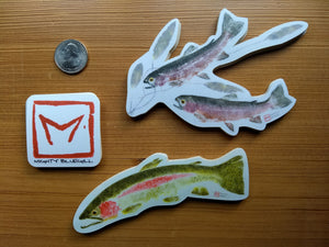 Rainbow Trout and Pondweed Decal