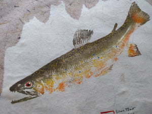 Brook Trout on Chiri Gyotaku