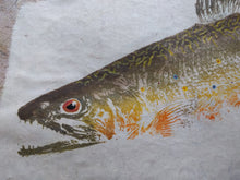 Load image into Gallery viewer, Brook Trout on Chiri Gyotaku