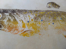 Load image into Gallery viewer, Brook Trout Original Gyotaku