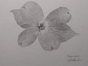 Original hand-printed dogwood bloom.