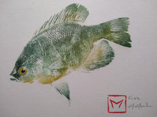 Load image into Gallery viewer, Flier Original Gyotaku (12x16)