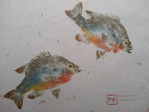 Redbreast Sunfish Pair Original Gyotaku 16x20