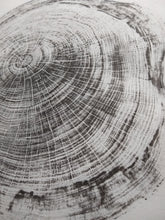 Load image into Gallery viewer, Original Woodcut Tree Ring Print on White Cotton Fabric (24x20)