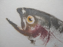 Load image into Gallery viewer, School of Rainbow trout original gyotaku. 20x24