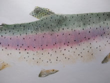 Load image into Gallery viewer, Eagle Lake Rainbow Trout Original Gyotaku. 24x30