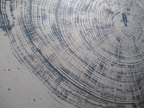 Original Woodcut Tree Ring Print (24x30)